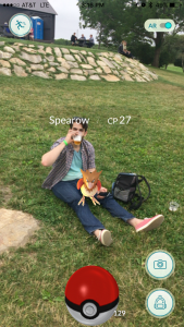 A wild Spearow appeared at Buzzards Bay Brewing!
