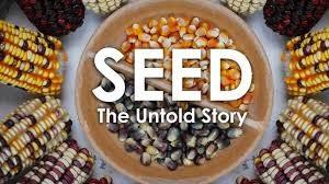 seedfilm