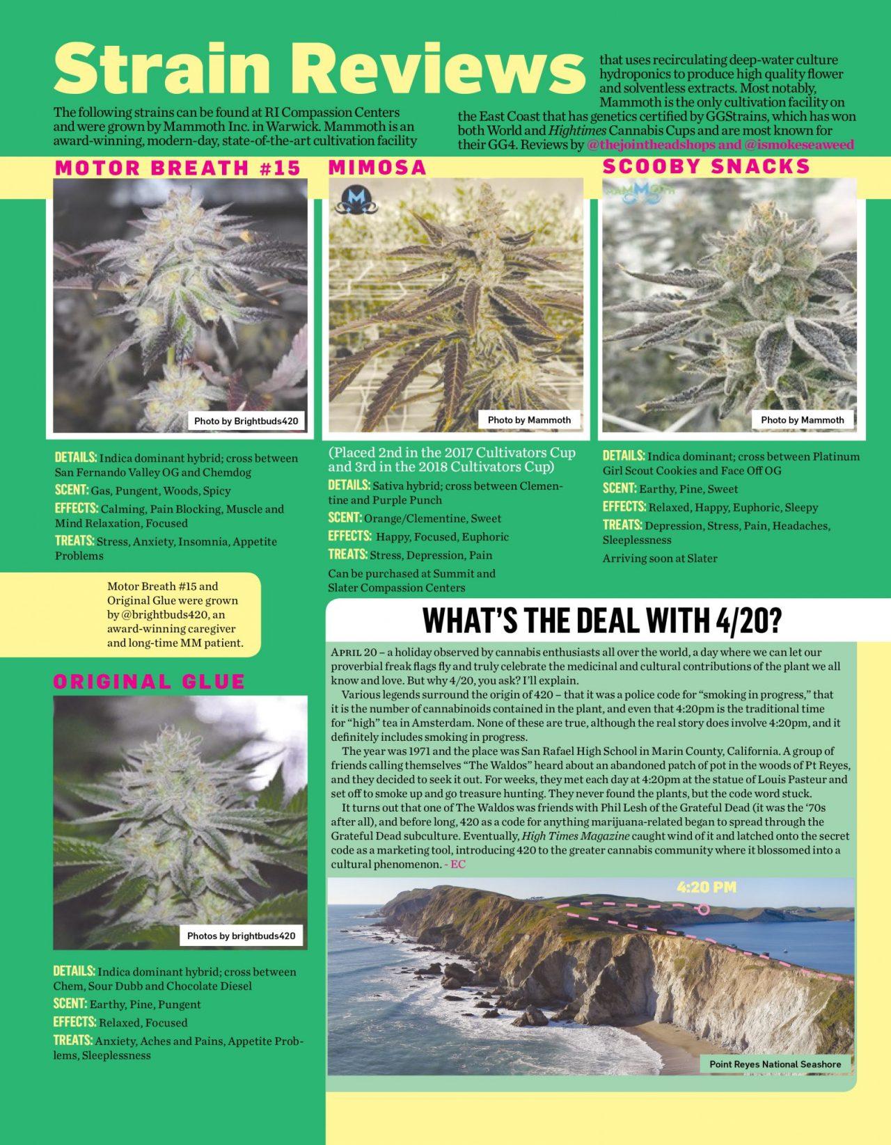 CannabisCenter